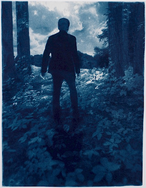 man emerging from the forest with the sunlight landscape beckoning beyond the trees metaphor for carl jung shadow