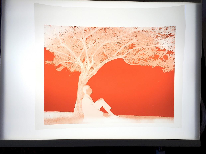 cyanotype digital negative using orange ink