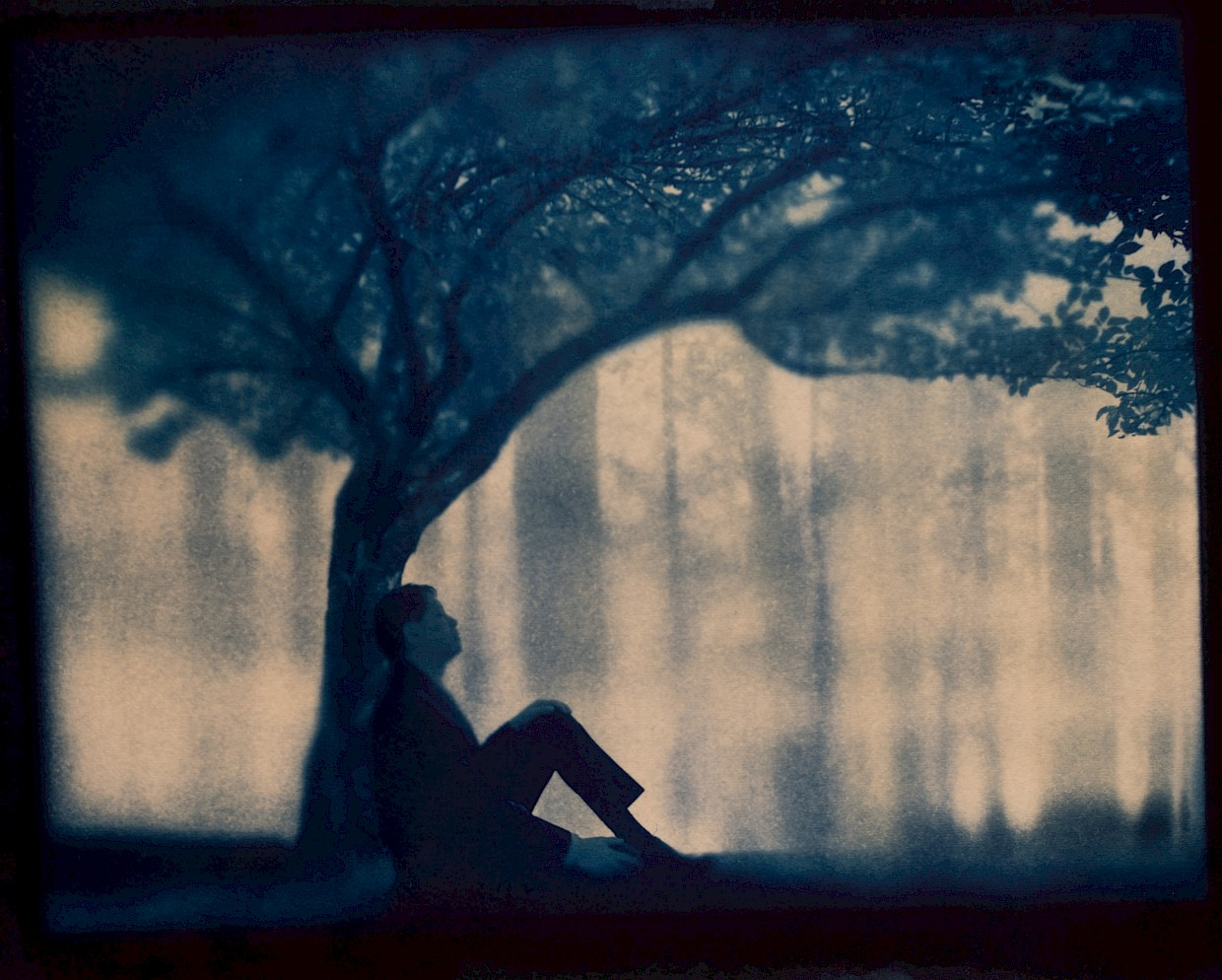 a man sleeps underneath a tree in a forest and he is dreaming